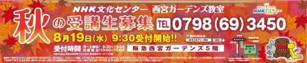 NHK秋の募集